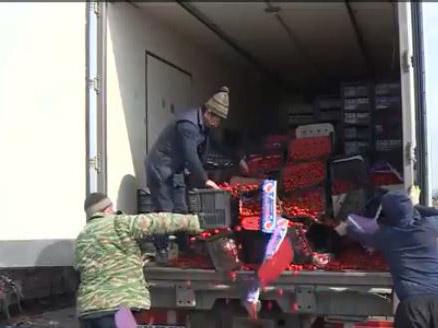 Тонны помидоров попали под бульдозер во Владикавказе