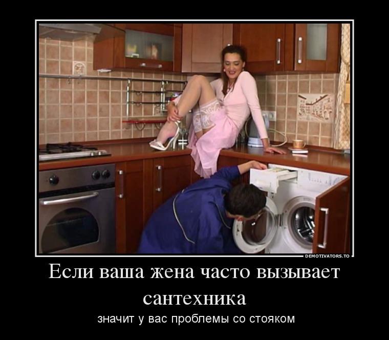 Сантехник и домохозяйка смешные картинки