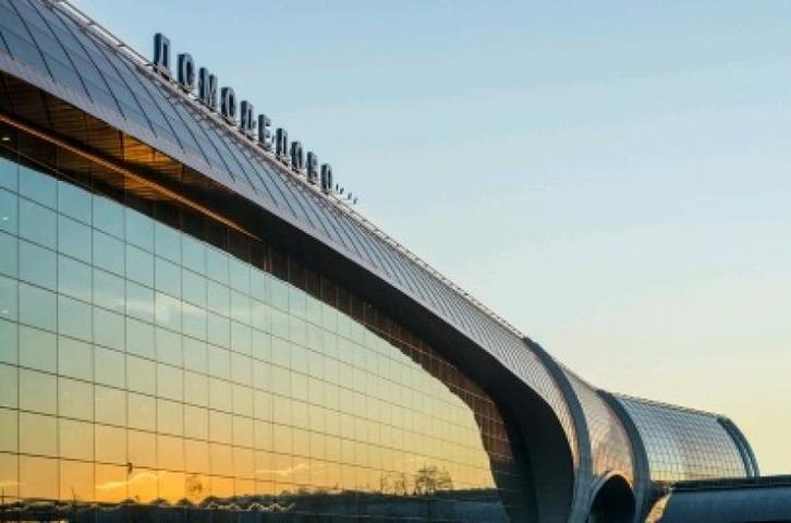 Летевший из Лондона авиалайнер экстренно сел в «Домодедово» из-за приступа пассажирки
