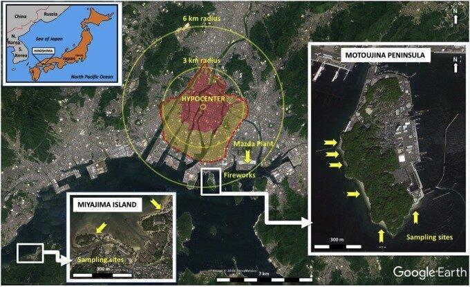 Места, где встречаются хиросимиты интересное, минералы, последствия, ядерный взрыв
