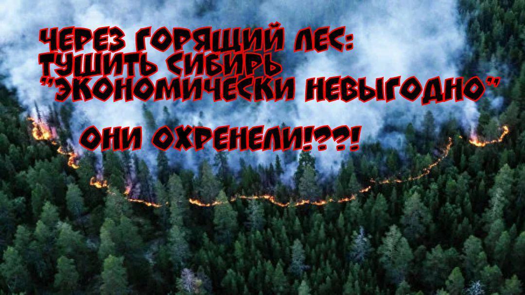 Чиновники весельчаки: пожары решено не тушить — невыгодно экономически