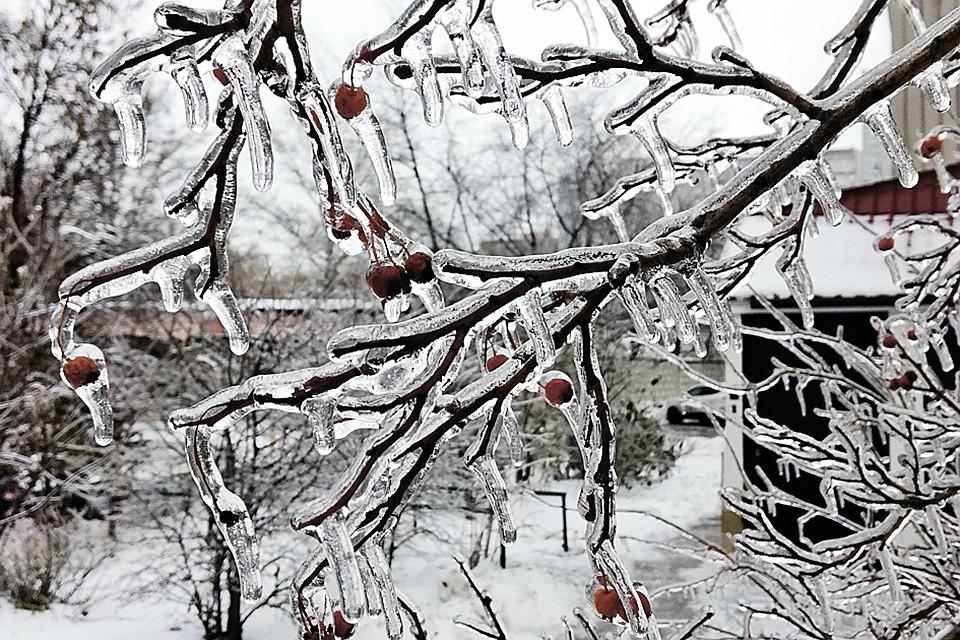 Снежно-дождливый март в Подмосковье: что делать дачникам