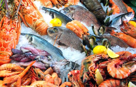 Черный список: 8 видов рыбы,…