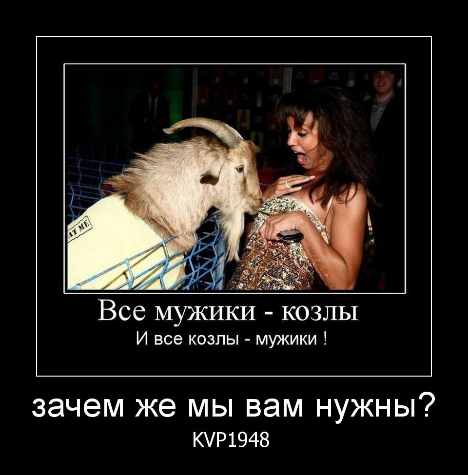 Смешная картинка все мужики козлы