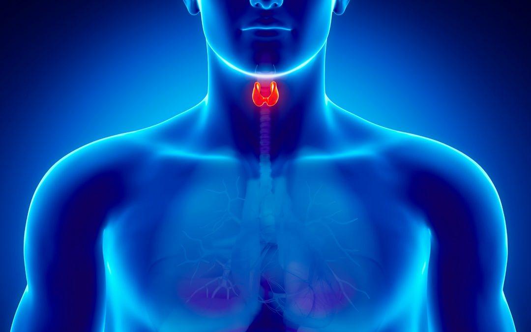 5 особых упражнений помогут восстановить работу щитовидки