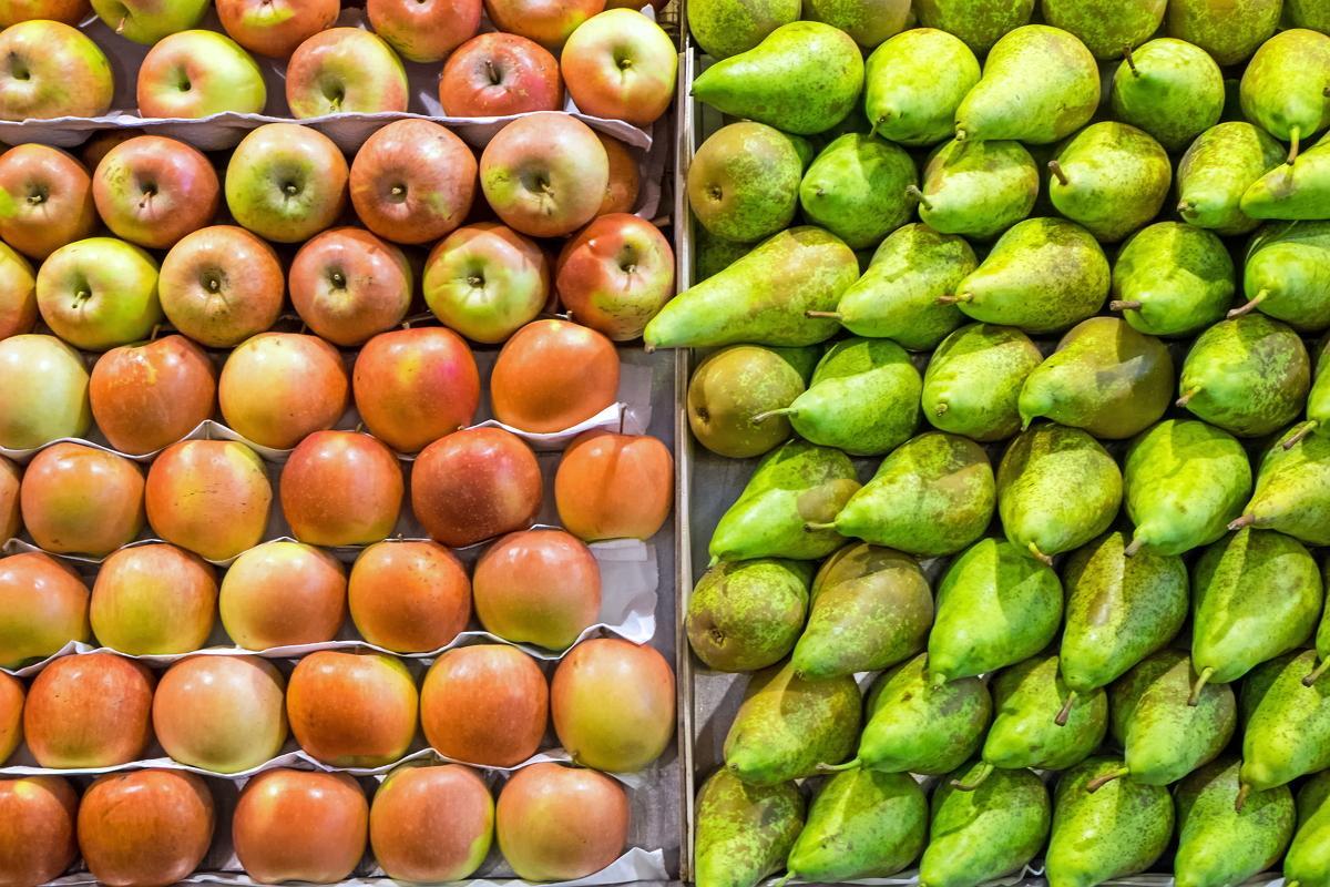 Картинки по запросу яблоки и груши