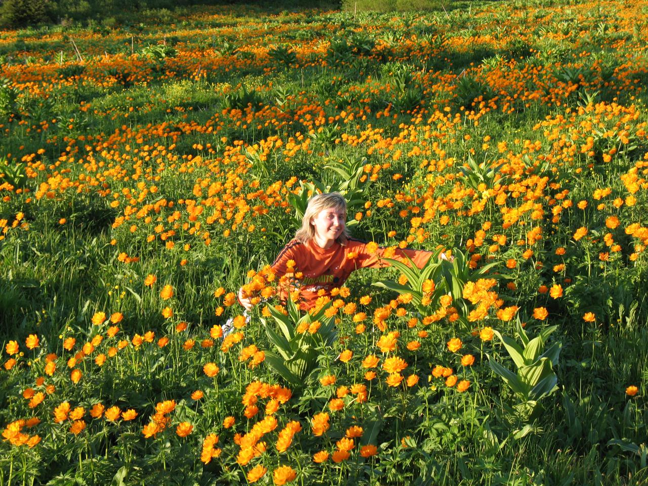 Испытать цветочный восторг