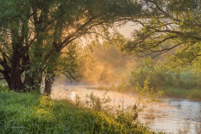 Июньский день на реке Угре
