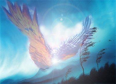 Мы делимся светом своей души!