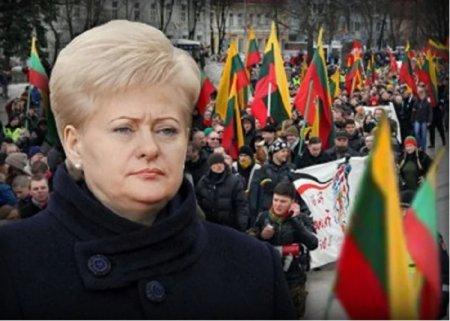 Русофобия дорого обошлась Литве
