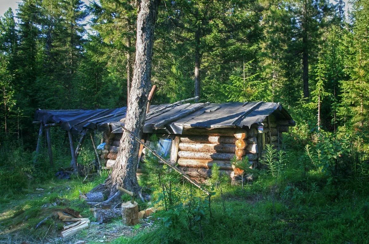 картинки охотничий домик в лесу способ выражения своего