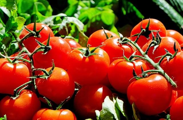 Турецким помидорам в России раньше зимы делать нечего