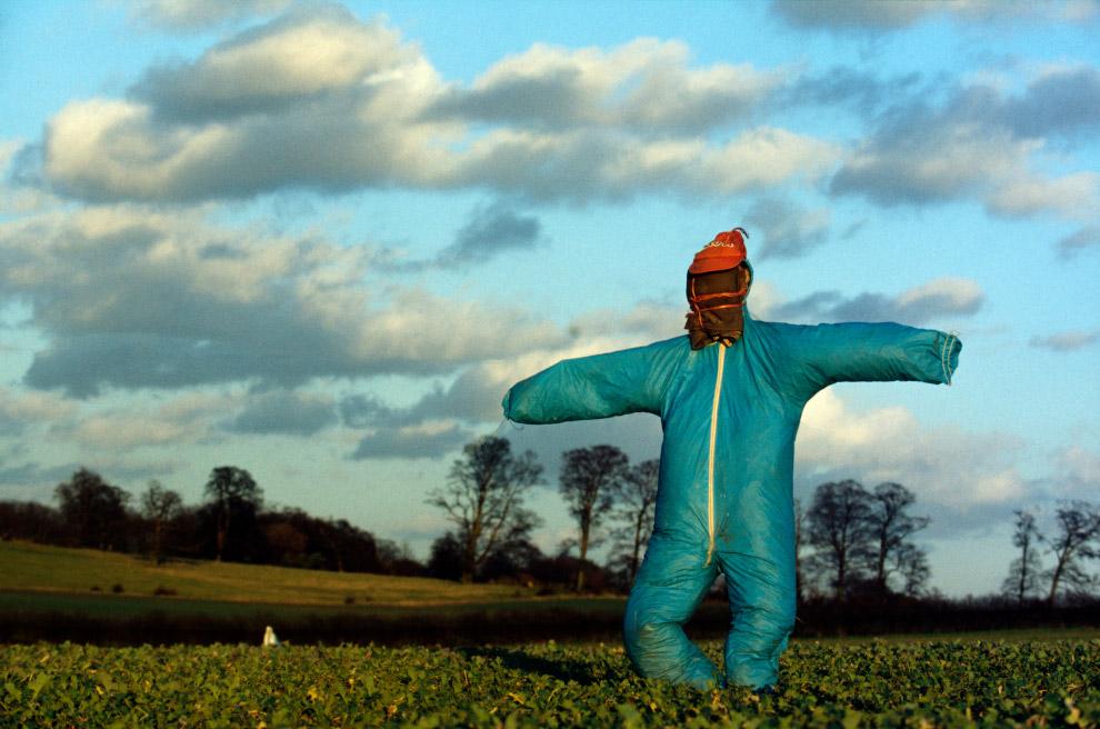 Пугала из сельской местности Англии Англия