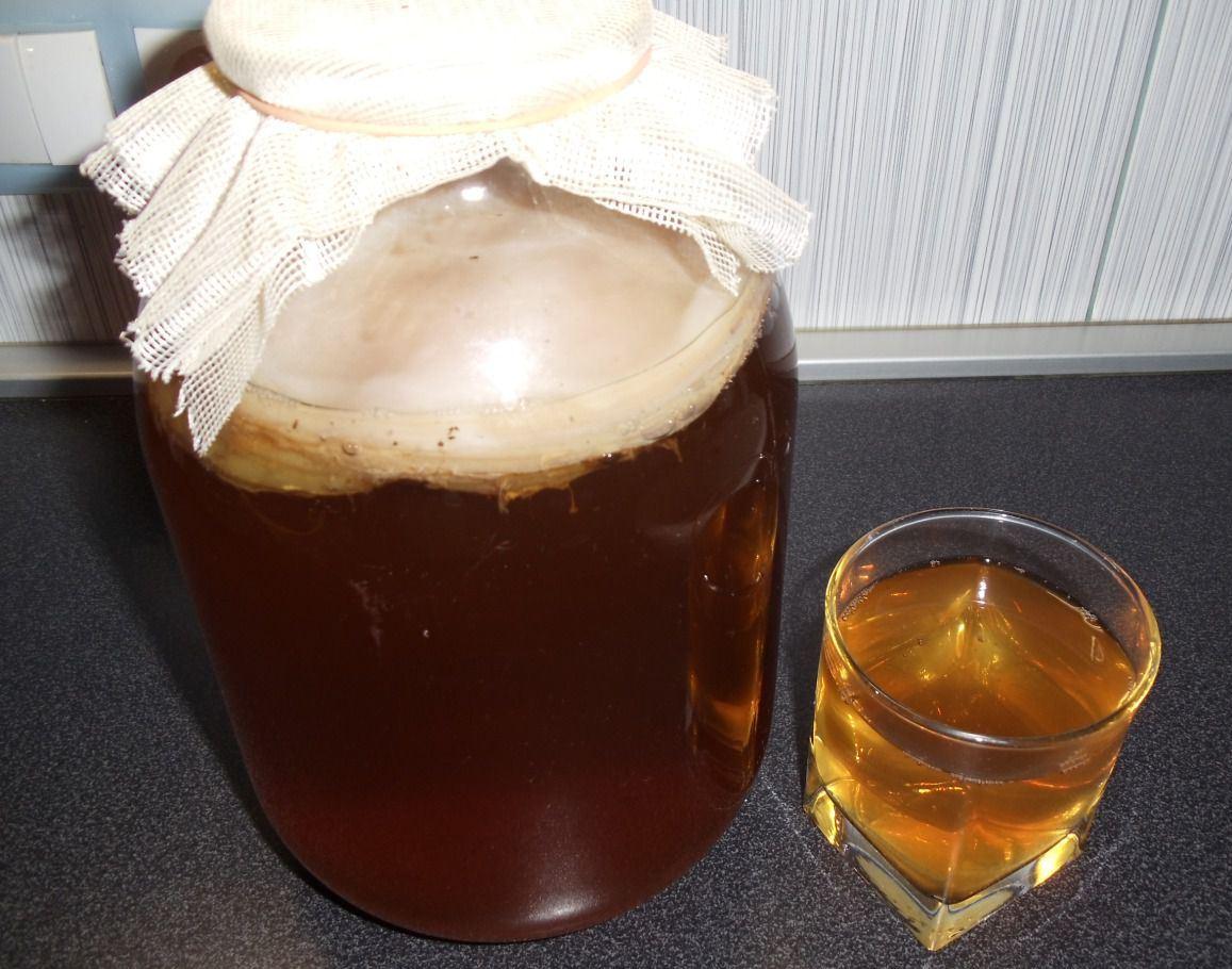 Как вырастить чайный гриб дома