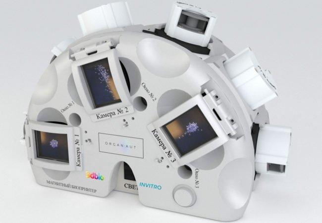 Российский 3D-биопринтер напечатал в космосе 12 органов