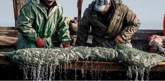 Украина юридически доказала отсутствие конфликта с РФ в Азовском море