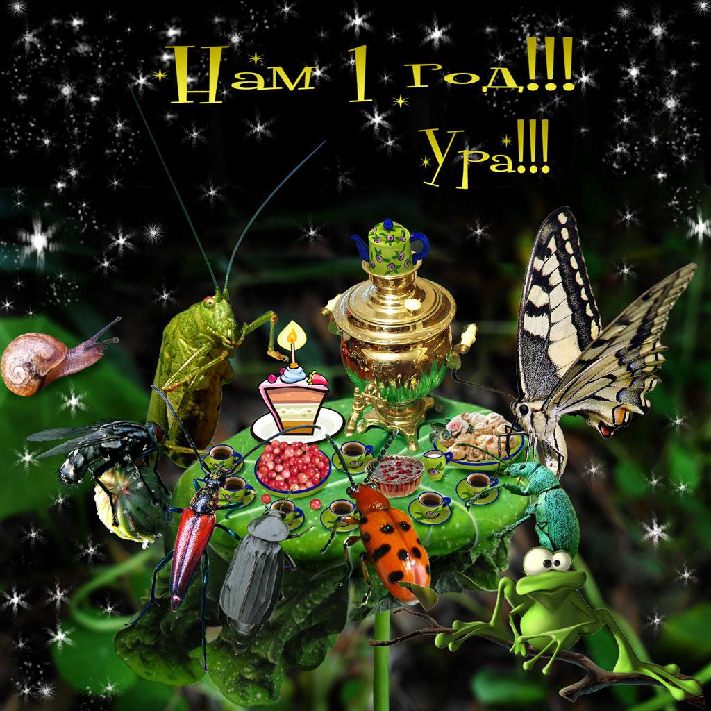 С Днем Рождения, Макруха!!!
