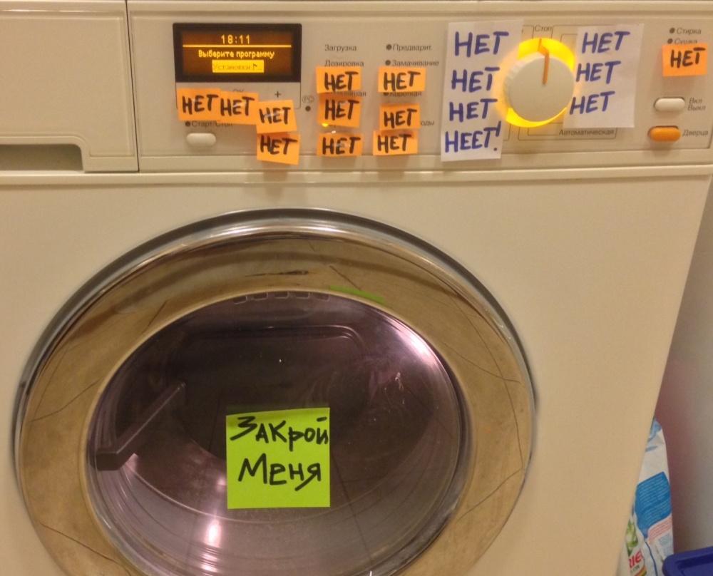 Пионами букет, картинки стиральная машина прикольные