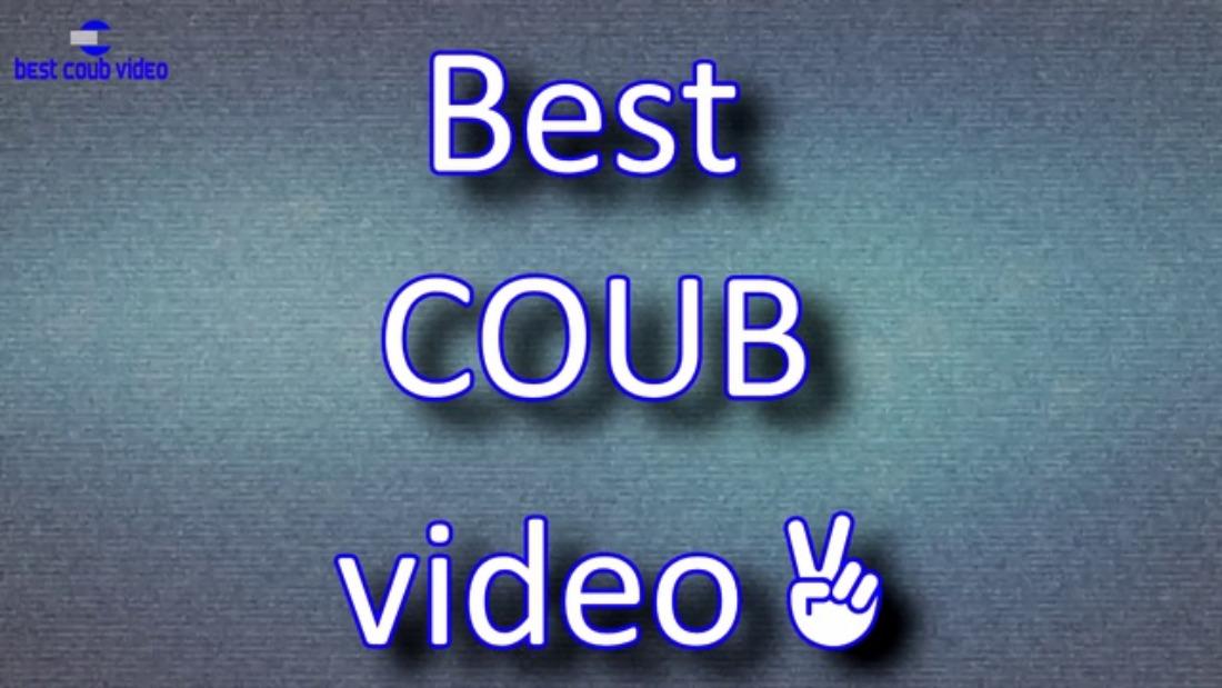 Подборка видео COUB за август 2016
