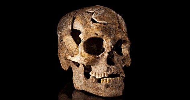 Загадочные черепа, которые открыли тайны древних цивилизаций