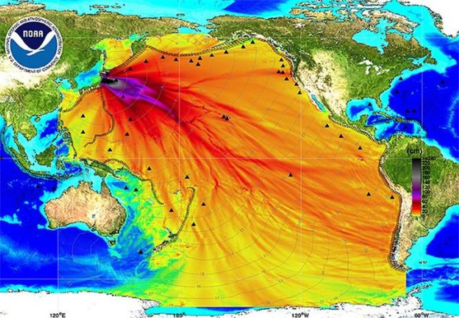 Фукусима отравила весь Тихий…