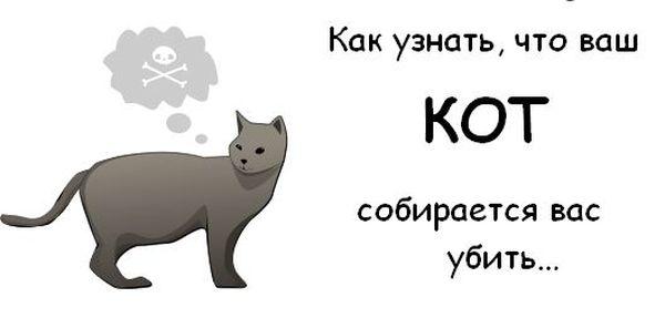 Пугалка для тех, кто не любит котов))