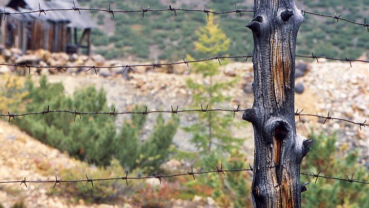 «На Колыме ещё много работы»: Для фейкометов и разжигателей Баранец предложил безальтернативное наказание
