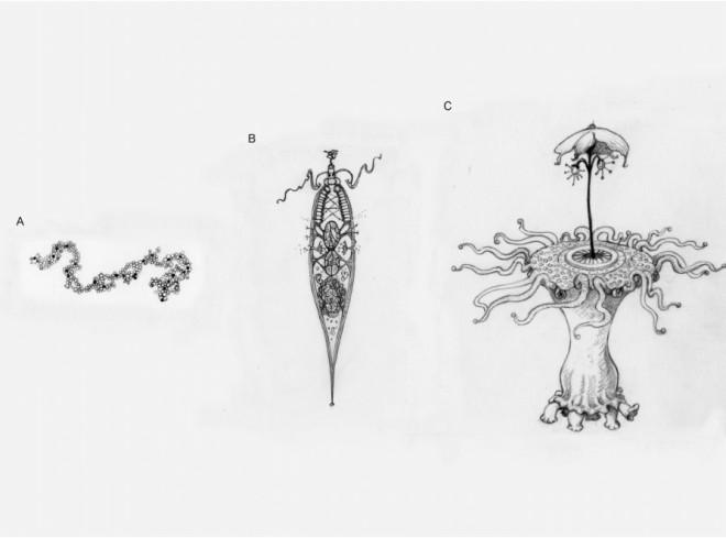 Настоящий вид инопланетян: ученые из Оксфорда показали изображения Книги,космос,Оксфорд,пришельцы,Пространство,ученые,чужой