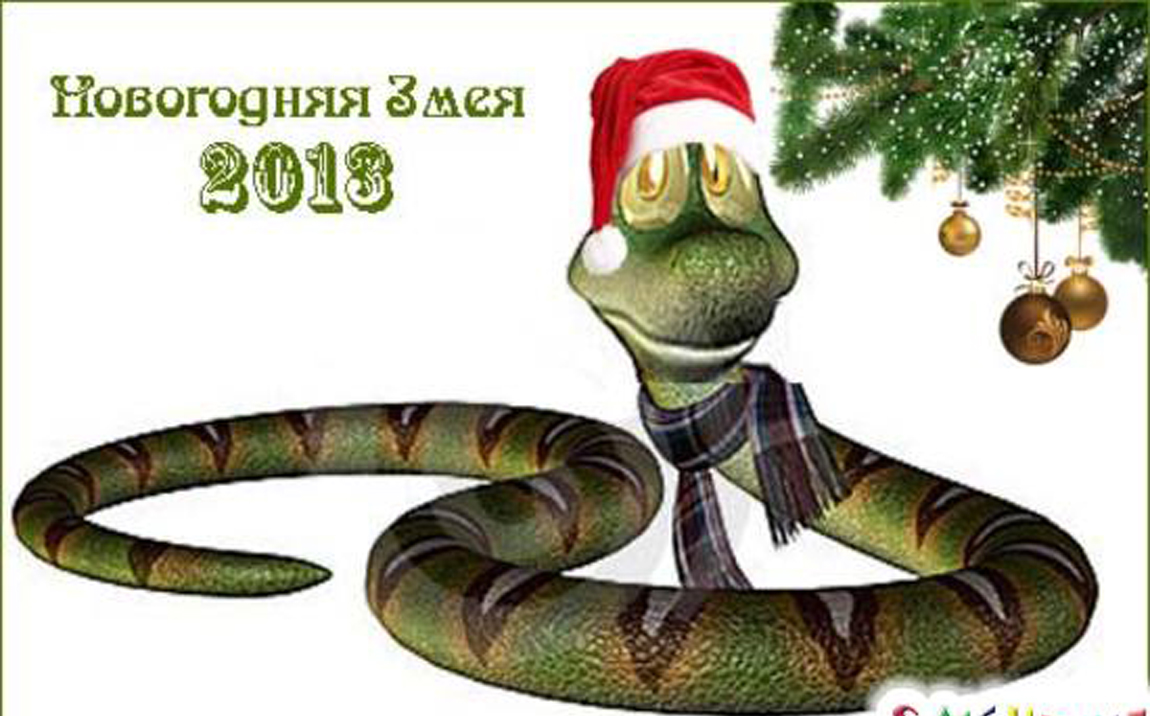 С годом змейки Вас, друзья!!!