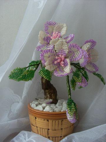Цветущий бансай.