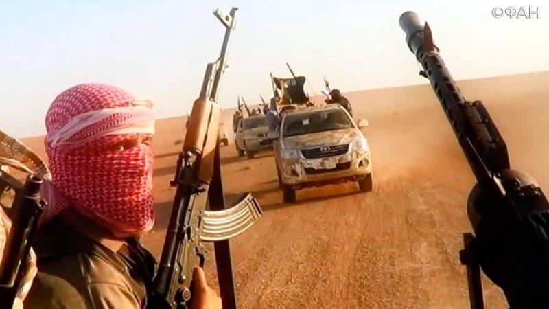 Алеппо: ИГИЛ активизировалось на востоке провинции