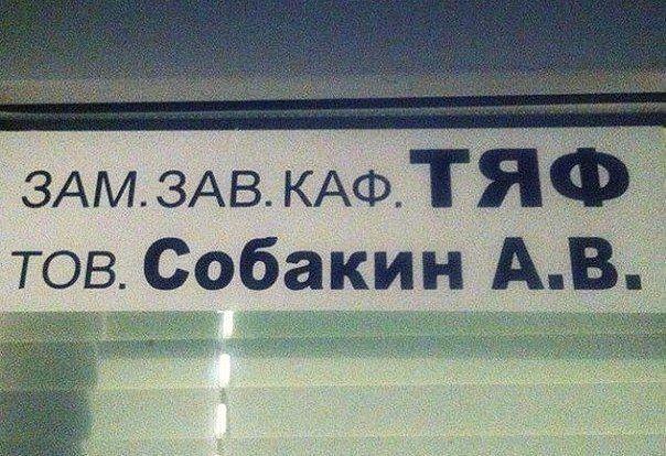 Велик и могуч русский язык. На великом можно написать многотомный роман, а на могучем за минуту передать его содержание анекдоты,веселые картинки,демотиваторы,приколы,юмор