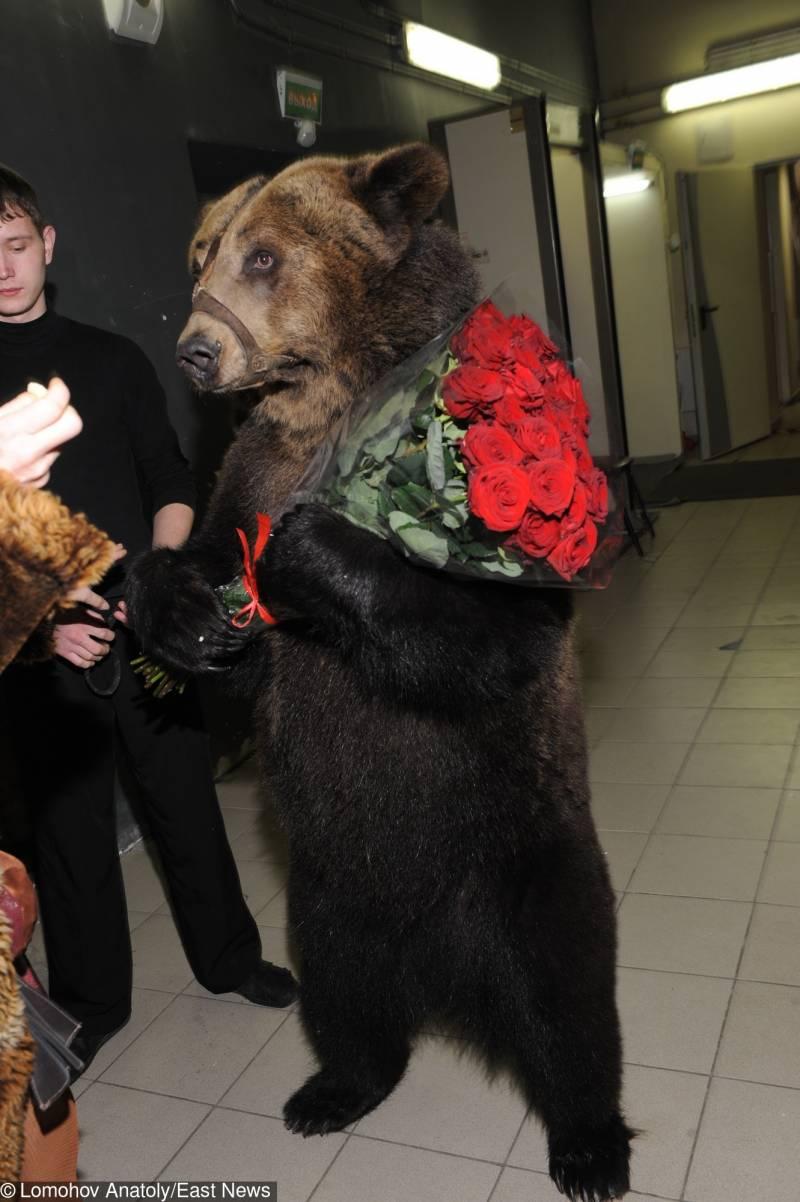 Гипотеза русской «самообороны». Не бойтесь Кремля, а бойтесь НАТО!