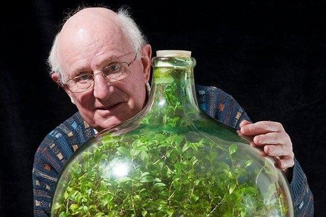 Такое возможно? Мужчина вырастил в бутылке сад, полив его один раз за 50 лет растения,хобби