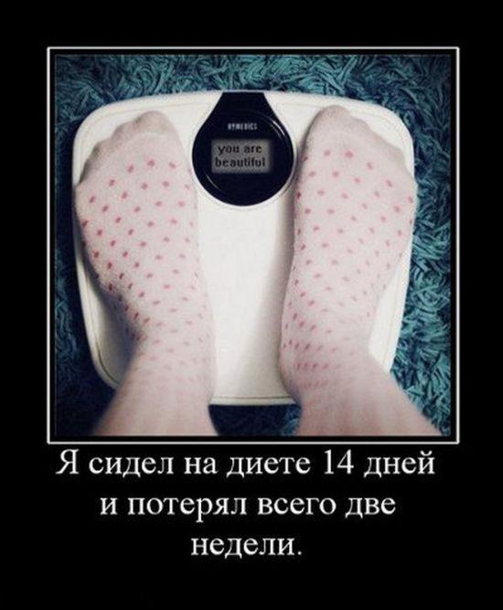 Картинка Демотиватор Для Похудения. Прикольные картинки про диету (70 фото)