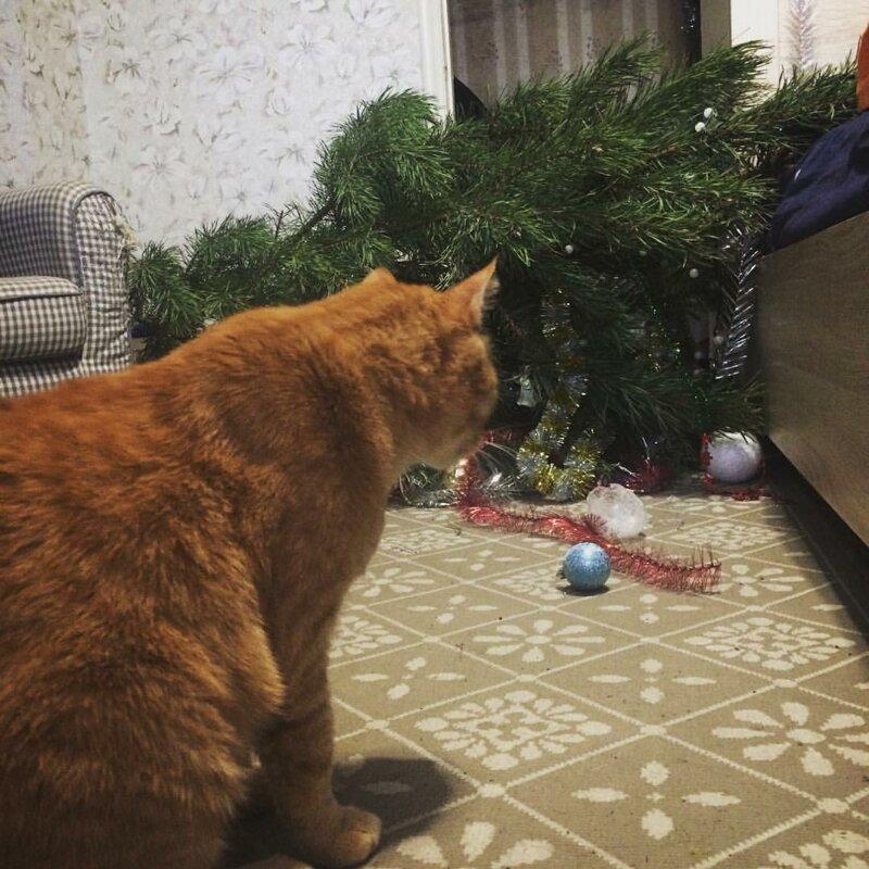 Вон она как падает, оказывается елка, игрушки, кот, новый год, разбой
