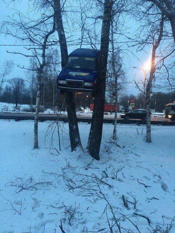 Короли парковок