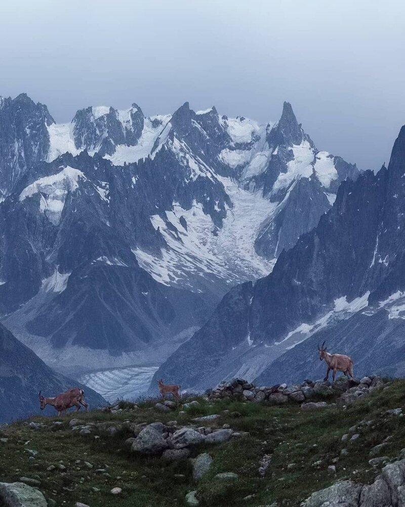 13. Альпы, горные вершины, горы, пейзажи, природа, фото природы, фотограф, фотографии природы