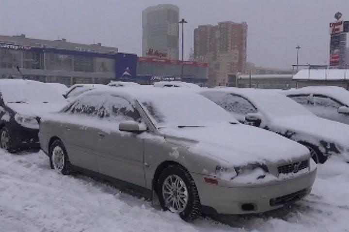 В Подмосковье задержали сотрудников автосалона, которые обманули более 200 клиентов