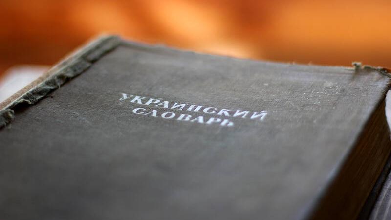 Главный украинизатор бьётся в истерике: дети не говорят на мове! украина