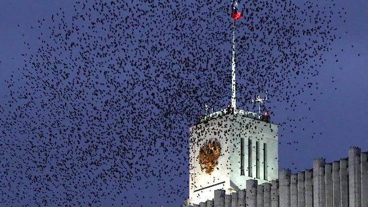 """""""Цинизм и безразличие к Отечеству"""": Матвиенко жёстко разнесла олигархов"""