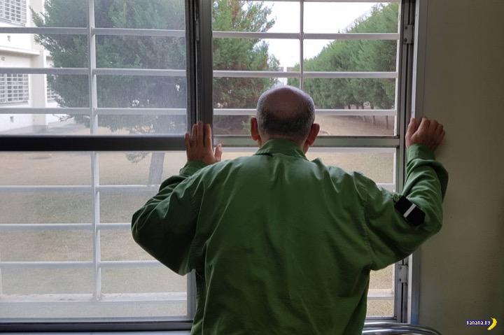 Японцы хотят в тюрьму