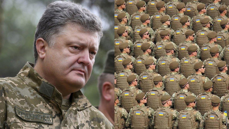 «Меркель дала Порошенко сигнал»: экс-депутат Рады объяснил, зачем на Украине ввели военное положение