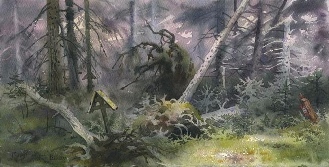 + Память леса. Остров Валаам (648x329, 248Kb)