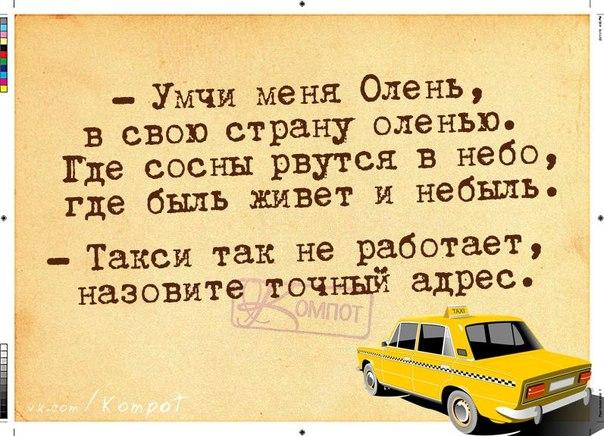 Смешные картинки про такси и диспетчеров, лилией днем