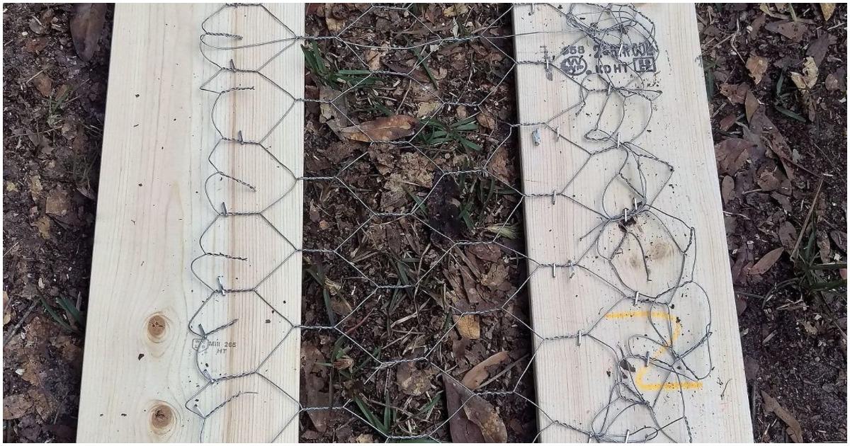 Увеличьте площадь посадки, соорудив многоуровневые грядки