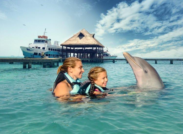 Стоит ли в один день поплавать с дельфинами на Исла-Мухерес и посетить парк Гаррафон?