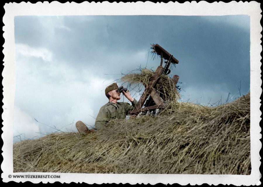 Одна винтовка на 18 человек и заградотряды за спиной эсэсовцев. Будапешт - 1944 1944,Великая Отечественная война,история,СССР