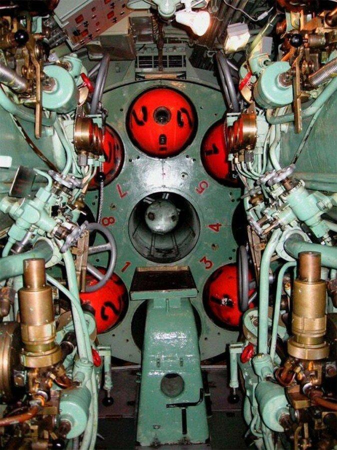 Картинки на тему подводный мир амура установки