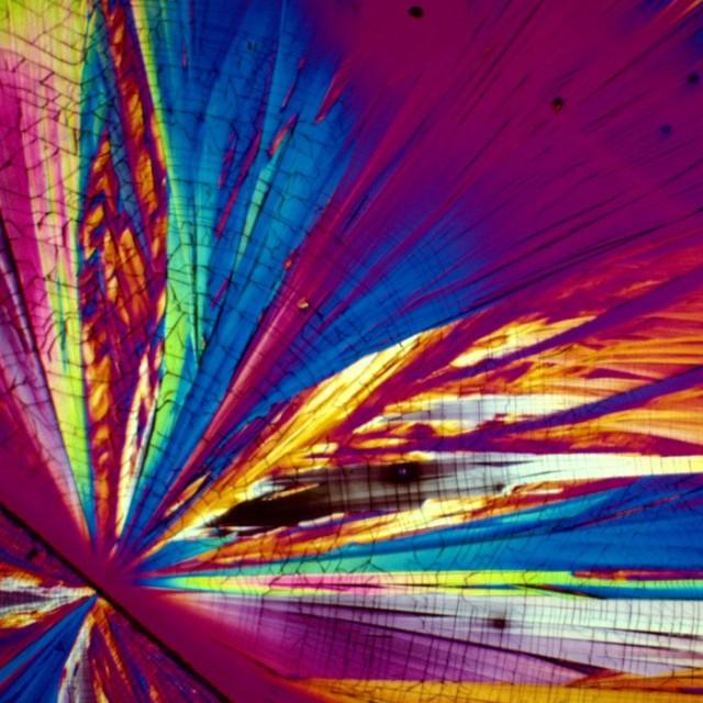 Как выглядят алкогольные напитки под микроскопом